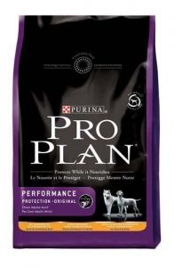 Pro Plan Performance